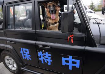 聊城保安公司的服务范围
