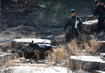 聊城保安巡逻不是机械地重复运动